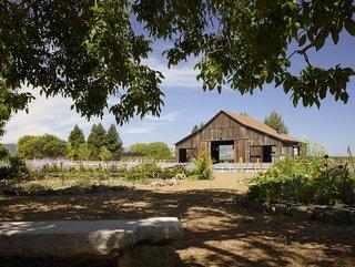 Napa Vineyard Barn