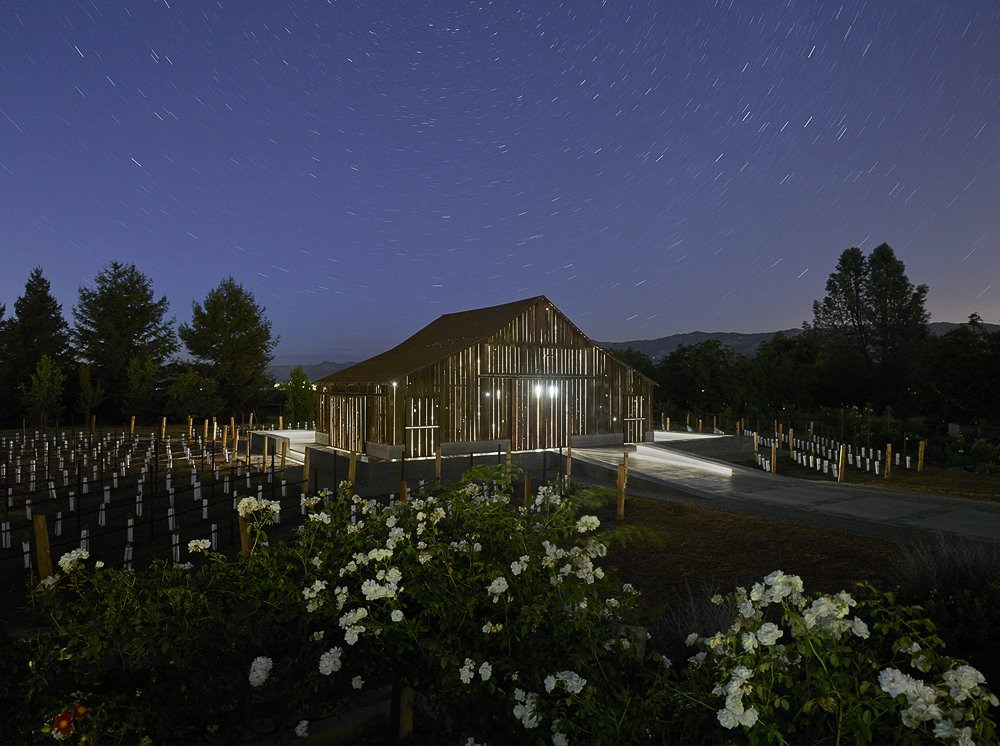 Outdoor, Back Yard, Trees, and Flowers  Napa Vineyard Barn by Centric General Contractors