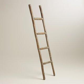 "World Market ""Wood Ladder Decor"", $50"