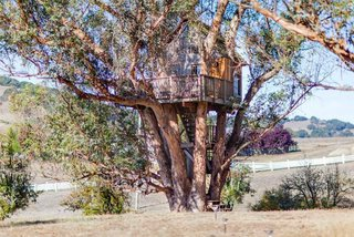 Breathe in the eucalyptus scent while you're lulled to sleep in this majestic nest. Another Bay Area tree house, this one is located in Petaluma, California, which is known for it's small town charm. It's located only a few miles north of San Francisco, while the Santa Cruz option is further south of the city. Enjoy a trip to the vineyards, and watch the sunset on this spacious deck.