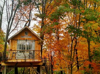 It's like tree climbing, but for adults! This Upstate New York tree house is a private little sanctuary best suited for anyone who wants to get some creative inspiration off the beaten path. We'd love to hide out here for a few weeks to transform it into a writer's retreat.