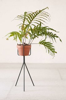 Urban Outfitters Tripod Plant Stand ($34)