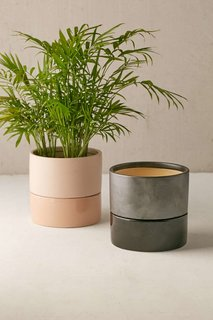 Urban Outfitters Madison 6-inch Planter ($24)