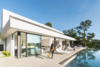 Modern home with Outdoor, Back Yard, Hardscapes, Trees, Large Pools, Tubs, Shower, Infinity Pools, Tubs, Shower, Concrete Patio, Porch, Deck, Large Patio, Porch, Deck, Landscape Lighting, Wood Fences, Wall, and Horizontal Fences, Wall. Photo 8 of ELL - A developers dream