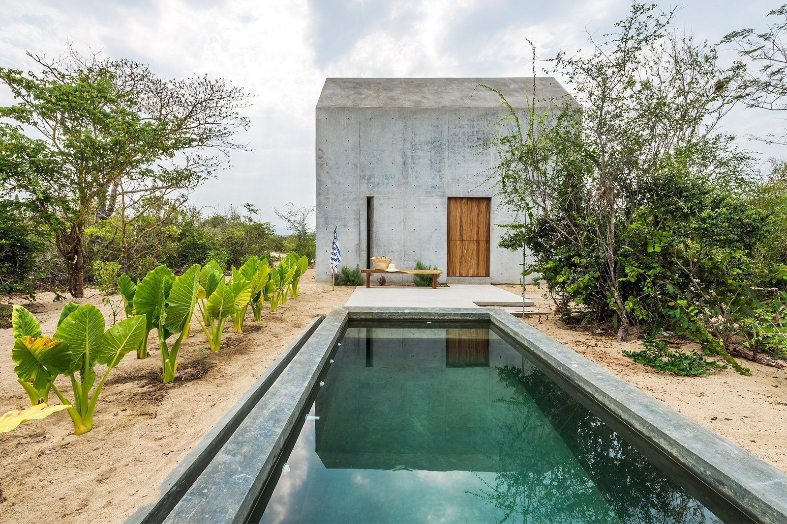 Outdoor, Back Yard, Shrubs, Large Pools, Tubs, Shower, and Trees  Photos from La Casa Pequena