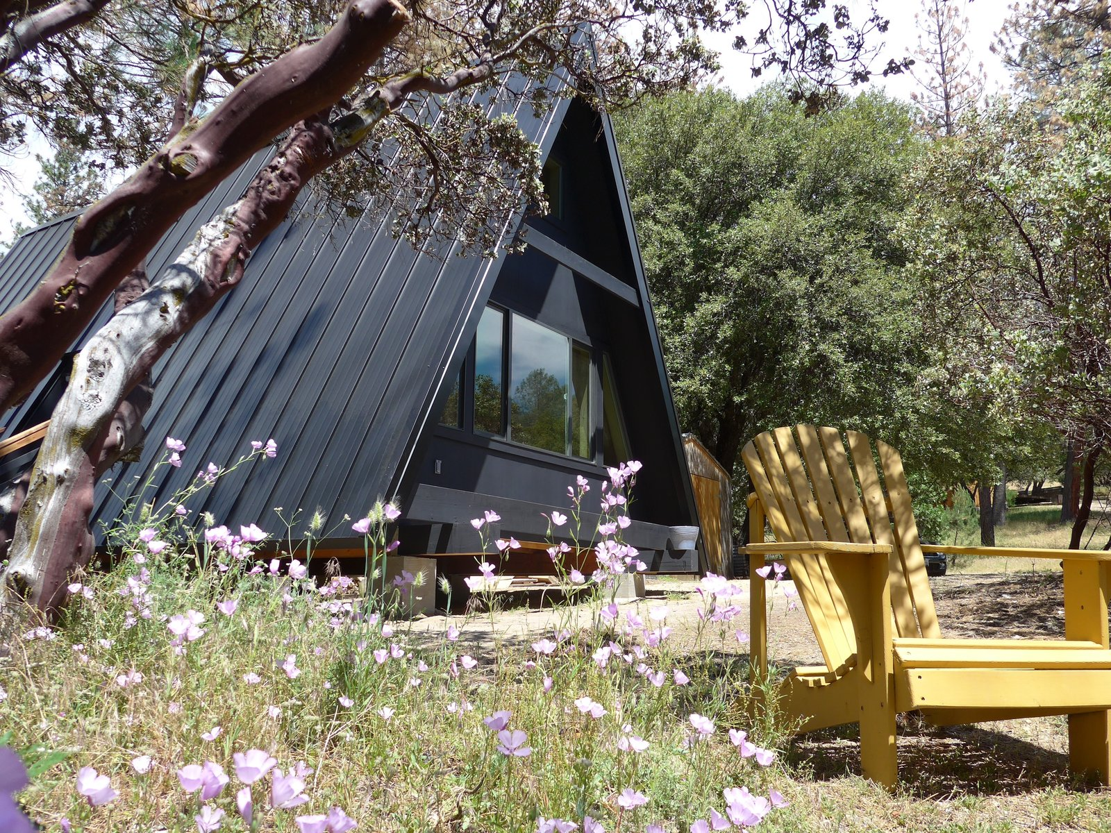 Outdoor  Photos from 10 Houses That Tell Us Black is Back