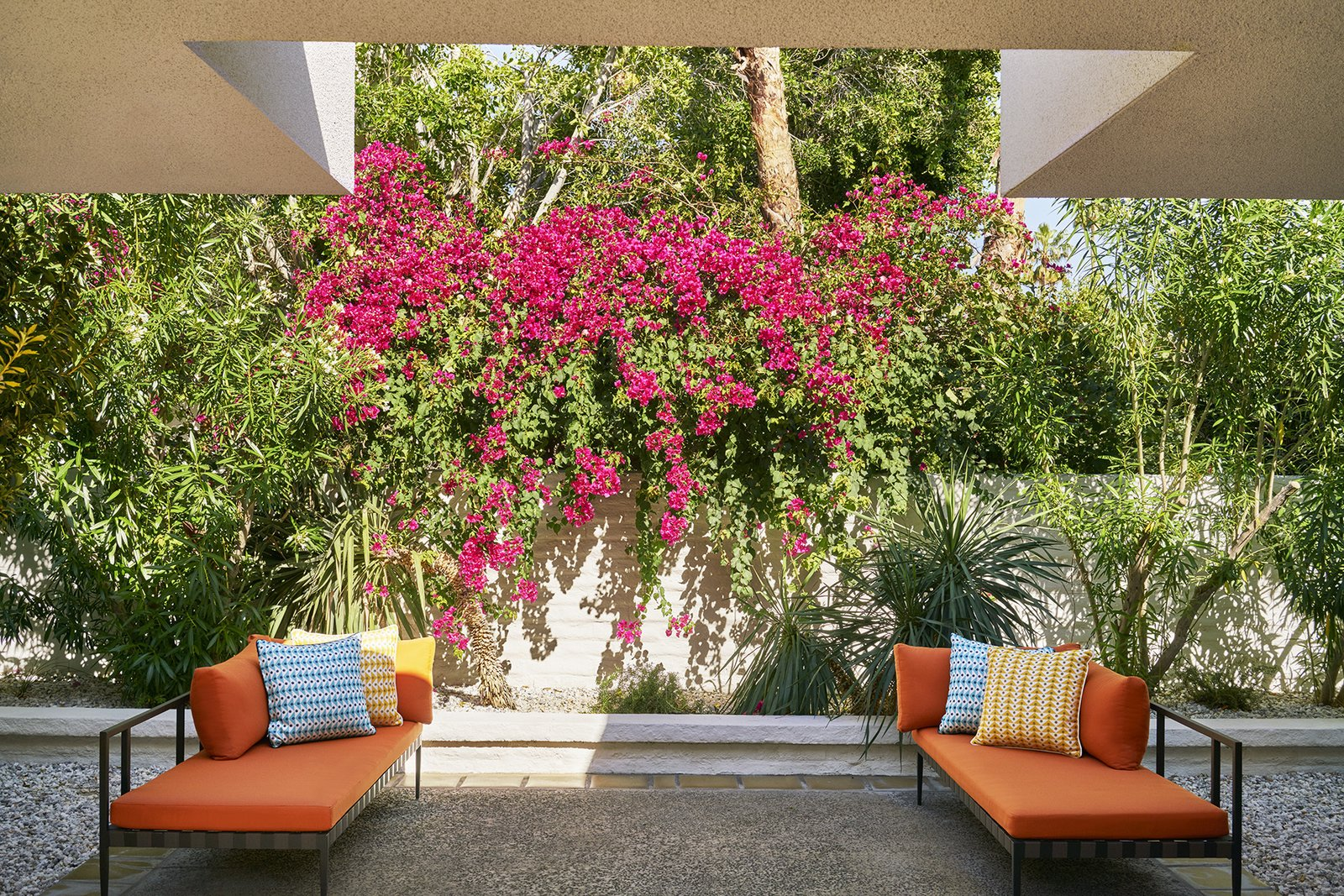 Photo 7 of 7 in jonathan adler reveals his redesign of the parker outdoor gardens flowers desert garden hardscapes and stone fences mightylinksfo