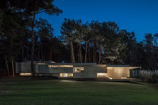 Casa Bosque, which sits in a forest along the Argentine Coast, naturally forms to a 6-foot sloping dune.