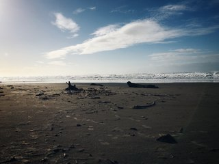 Footsteps in the sand. Nehalem, OR.