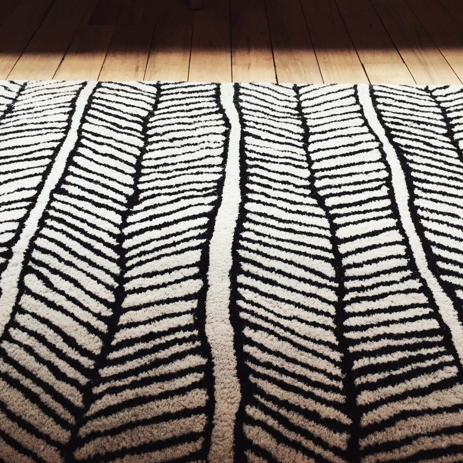 Black and white area rug creates beautiful texture and offsets the warmth of reclaimed wood flooring.  Schoolhouse Electric by J---S