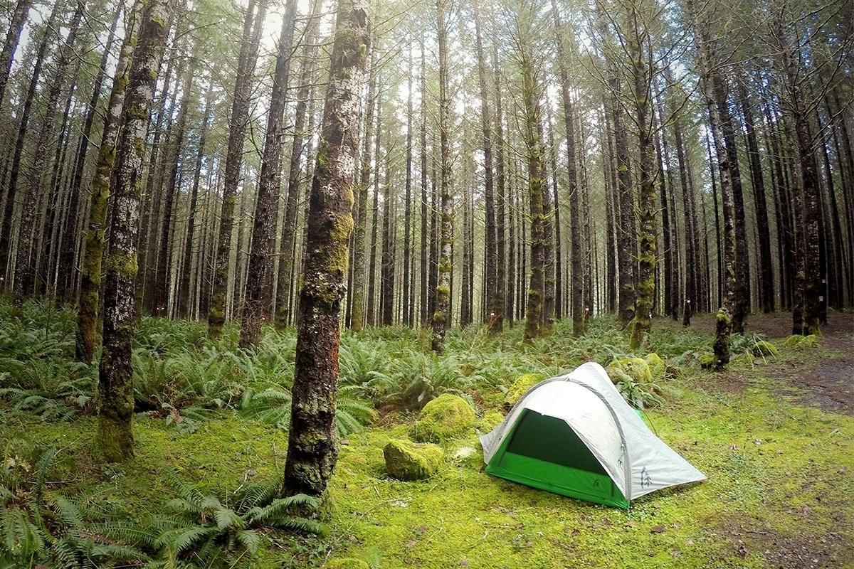 Photo 5 of 9 in Make the Most Out of Summer With These 9 Spectacular Tents