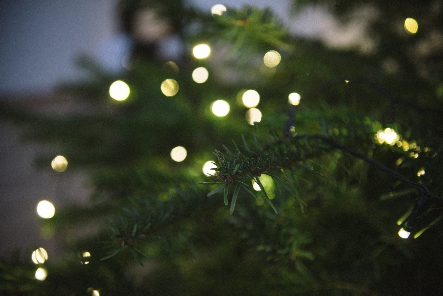 5 ideas to light up your festive season