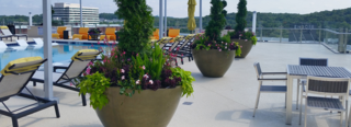 The Encore - Standing Out with Concrete Planters