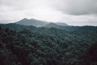 Within Ecuador's Most Beloved Cloud Forest, A Luxury Lodge - Photo 1 of 10 -