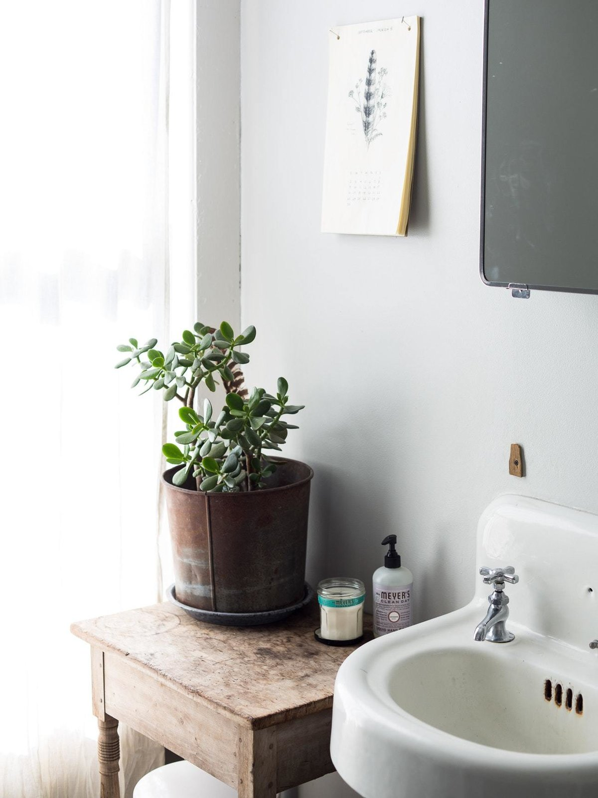 Bath Room and Wall Mount Sink  Photo 4 of 6 in 5 Houseplants You Can't Kill