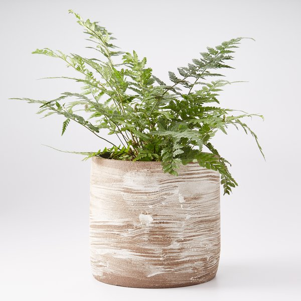 Alpine Winds Planter