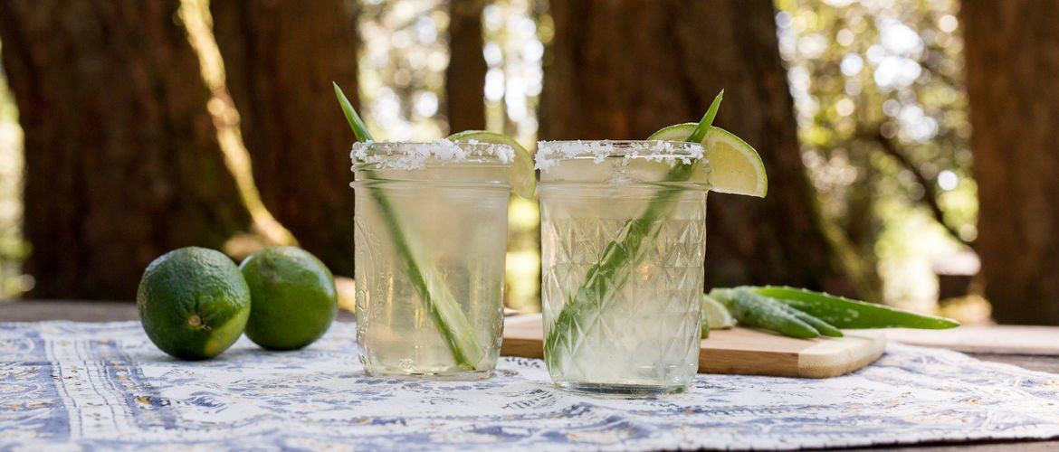 Photo 1 of 6 in How to Make Aloe Vera Margaritas