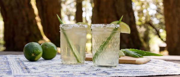 How to Make Aloe Vera Margaritas