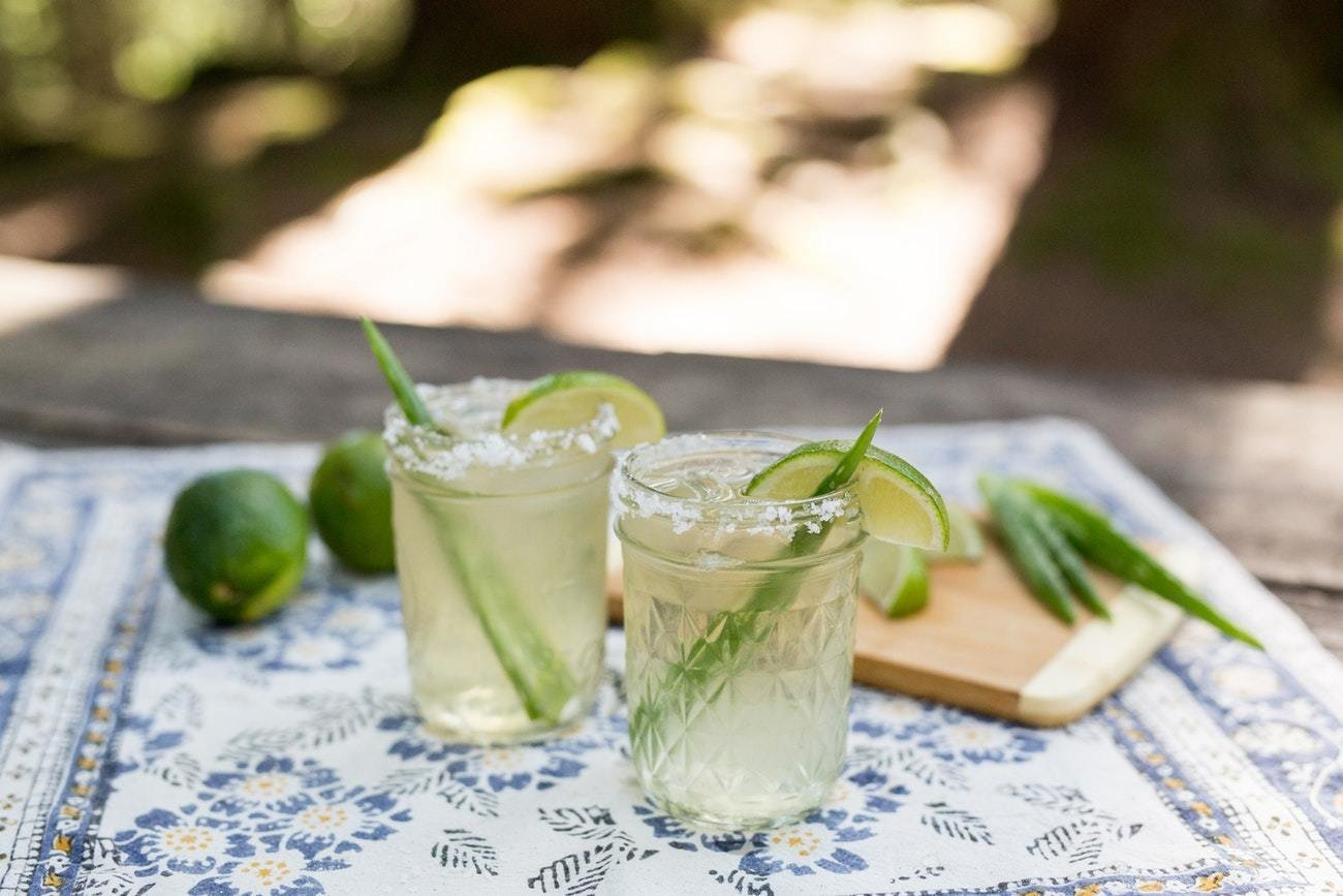 Photo 6 of 6 in How to Make Aloe Vera Margaritas