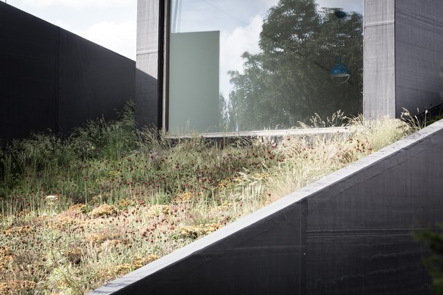 Photo 3 of 12 in A Compact Home That Literally Pops Up From the Grass