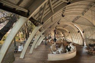 Eco-Friendly Safari Lodge in Africa's Okavango Delta - Photo 11 of 12 -