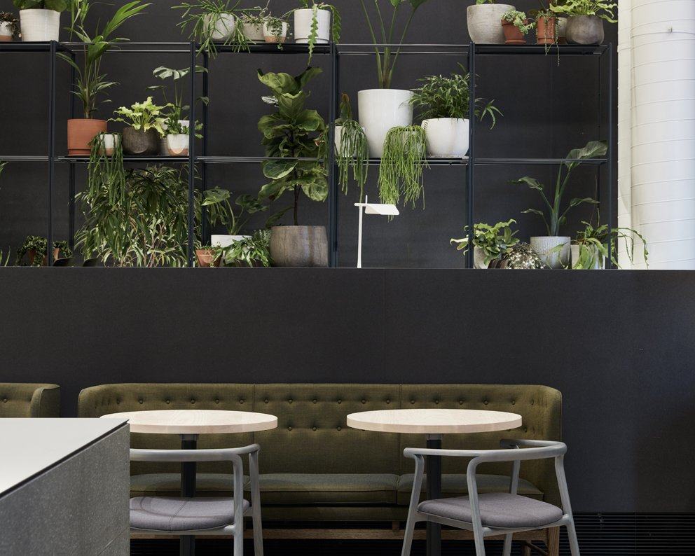 Photo 3 of 10 in An Old Power Station in Melbourne is Transformed Into A Modern Tiered Restaurant