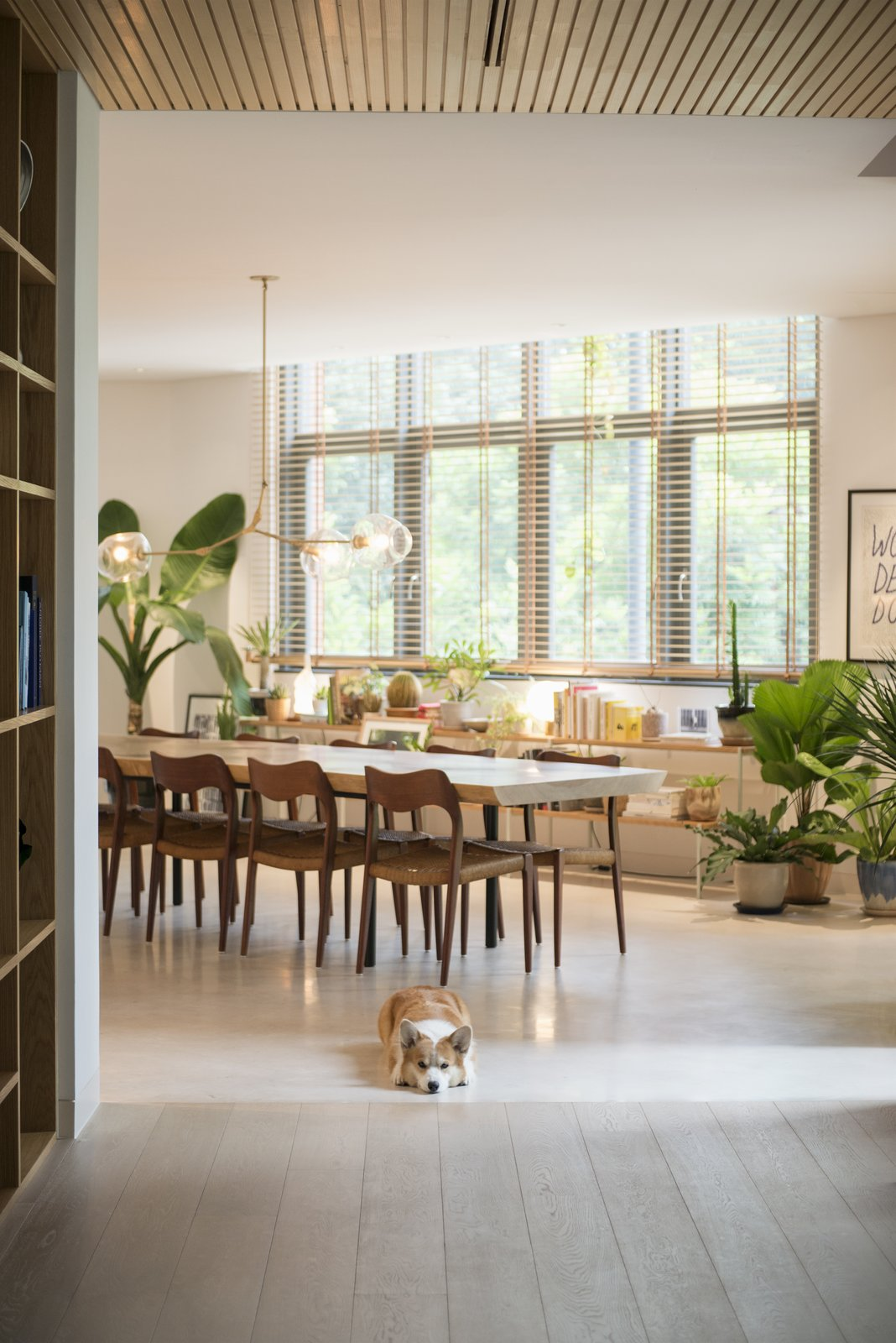 Tagged: Dining Room, Table, Pendant Lighting, Chair, Concrete Floor, Light Hardwood Floor, and Shelves.  Photo 3 of 10 in The Light and Airy Apartment G in Downtown Singapore
