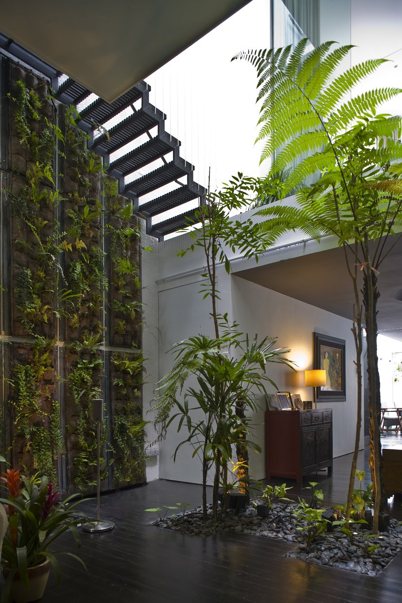 Sofa, Front Yard, Dark Hardwood Floor, Trees, Ceiling Lighting, Staircase, and Wood Patio, Porch, Deck  Photo 3 of 13 in This Modern Home in Singapore Is a Living Urban Jungle