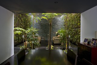 This Modern Home in Singapore Is a Living Urban Jungle - Photo 5 of 12 -