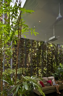 This Modern Home in Singapore Is a Living Urban Jungle - Photo 6 of 12 -