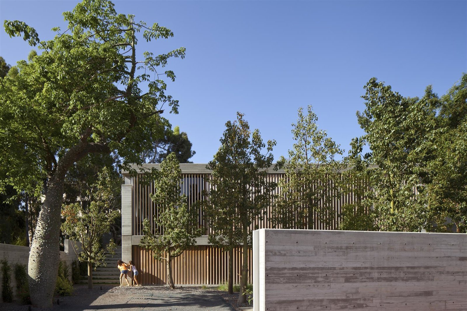 Outdoor, Front Yard, Trees, Horizontal Fences, Wall, Concrete Fences, Wall, Hardscapes, and Walkways  Photos from An Architect's Bright and Airy Family Home Thrives Within a Brutalist Concrete Structure