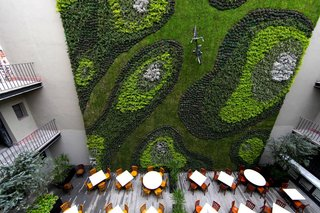 10 Ways to Create an Uplifting Vertical Garden - Photo 10 of 10 - To disrupt the viewer's senses, a bicycle was added to this massive green wall inside the courtyard of an old colonial building in Mexico City.