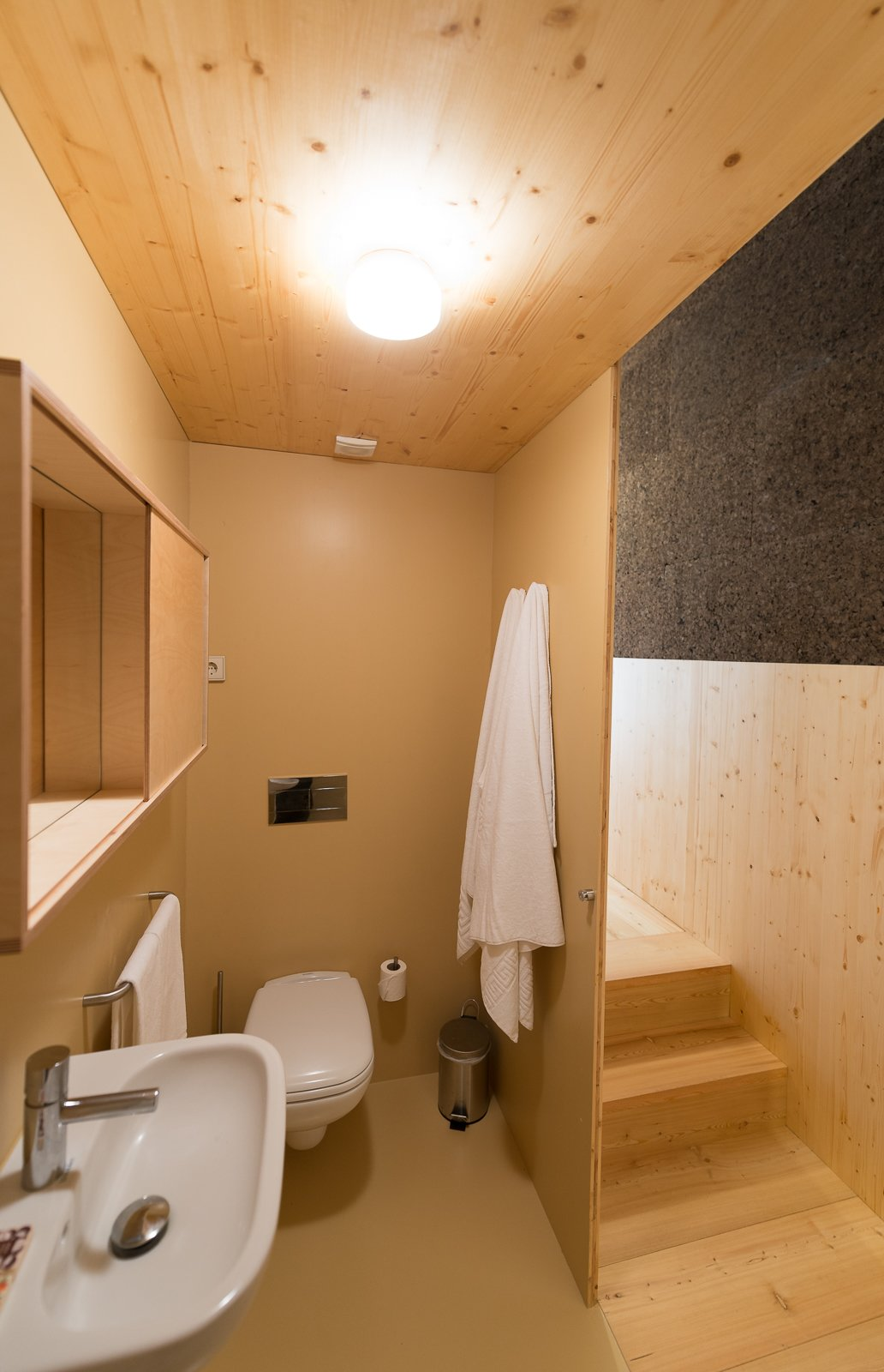 Bath Room, Light Hardwood Floor, Wall Mount Sink, One Piece Toilet, and Ceiling Lighting  Photo 6 of 16 in Stay in a Tiny, Eco-Friendly House in a Portuguese Schist Village
