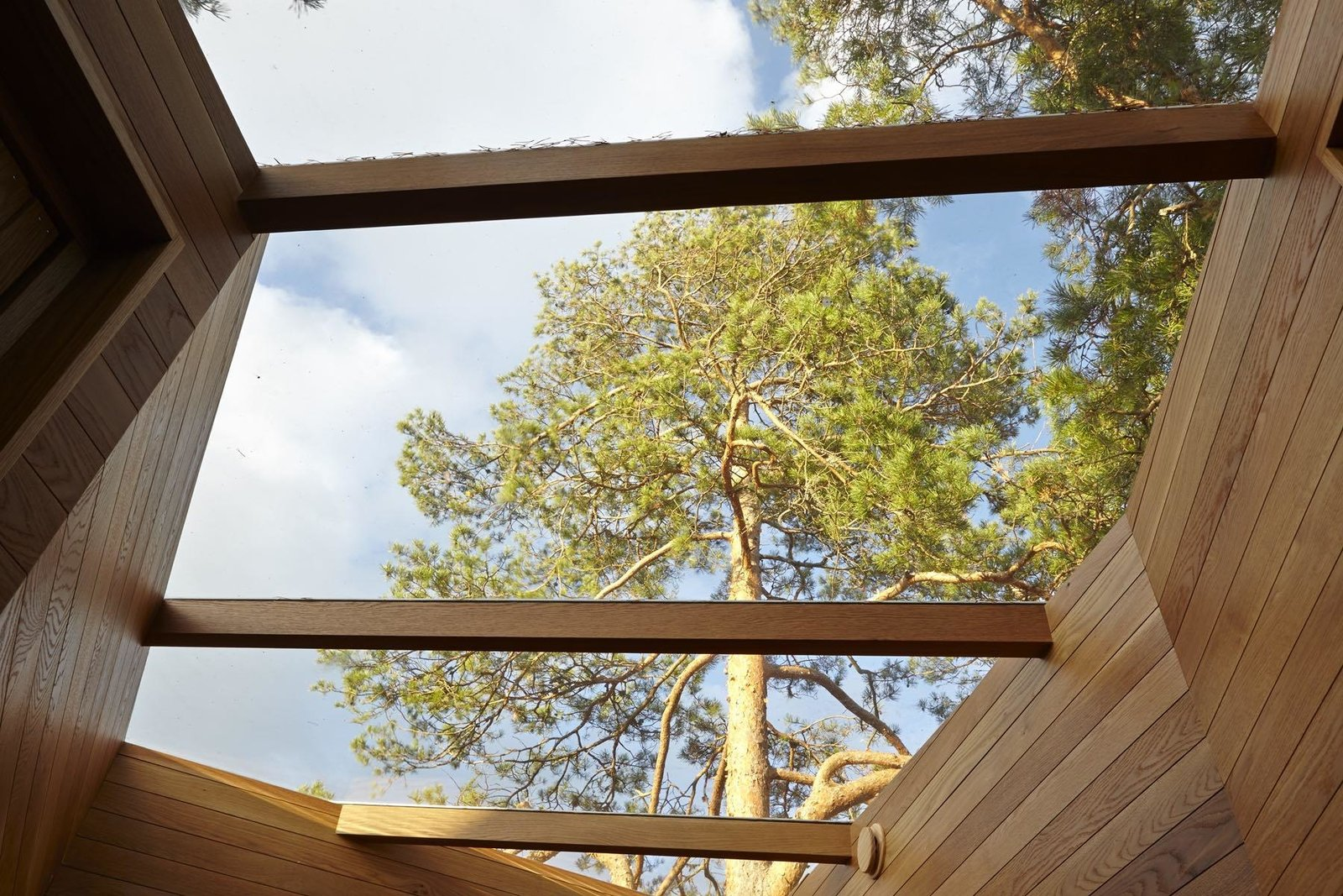 Outdoor, Trees, and Wood Fences, Wall  Photo 6 of 10 in A Tiny Bathhouse on the Norwegian Island of Hankø Made With Sustainable Softwood