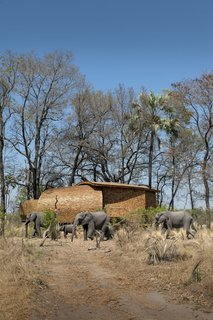 Designed by Michaelis Boyd Associates in collaboration with Nicholas Plewman Architects, Sandibe Okavango Safari Lodge in Botswana's Okavango Delta has 12 nest-shaped guest suites with cedar-shingle exteriors inspired by the shell of pangolins and the nests of weaver finches.