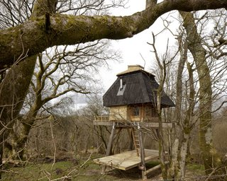 Tokyo-born, UK-based architect Nozomi Nakabayashi created this hut in a Dorset forest for a writer client. The small tree house-style hut is built with Douglas fir and locally sourced western red cedar, with interiors filled with birch plywood, cork insulation, and a hessian fabric ceiling.
