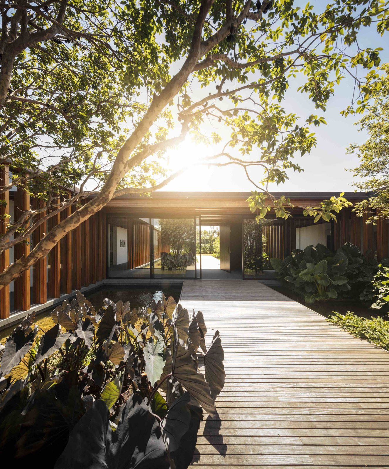 Exterior, House Building Type, Flat RoofLine, and Wood Siding Material  Photos from A Brazilian Home With a Touch of Japanese Zen