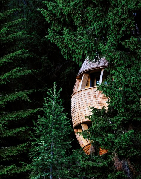 These Tree Houses in the Dolomites Look Like Egg-Shaped Pinecones - Photo 6 of 11 -