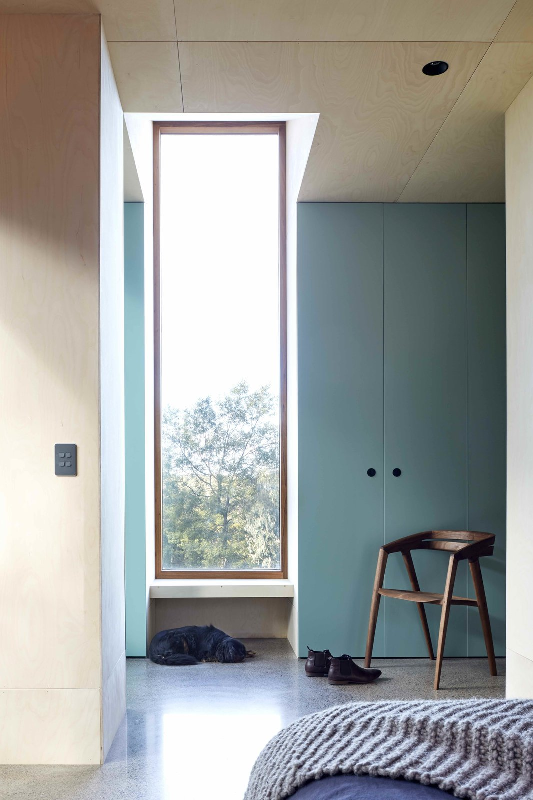 Windows  Best Photos from A Bushland Home in Melbourne That's Divided Between Two Pavilions