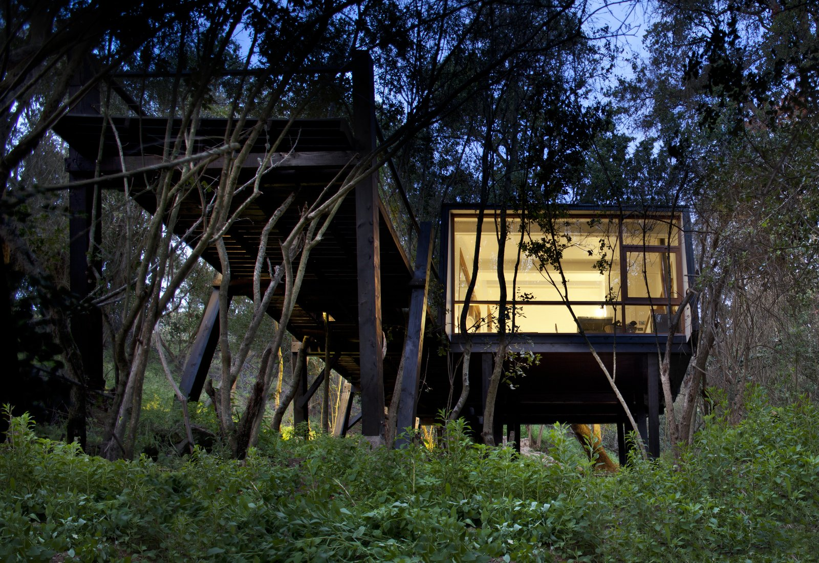 Exterior, House Building Type, and Wood Siding Material  Photo 6 of 10 in A Little Chilean Tree House That's One With the Canopy