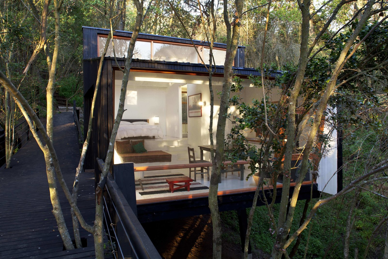 Exterior, House Building Type, and Wood Siding Material  Photo 7 of 10 in A Little Chilean Tree House That's One With the Canopy