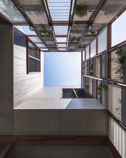 Living Screens Conceal a North Bondi Beach House and a Semi-Indoor Pool - Photo 5 of 18 -