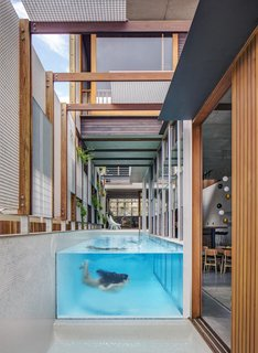 Living Screens Conceal a North Bondi Beach House and a Semi-Indoor Pool - Photo 12 of 18 -