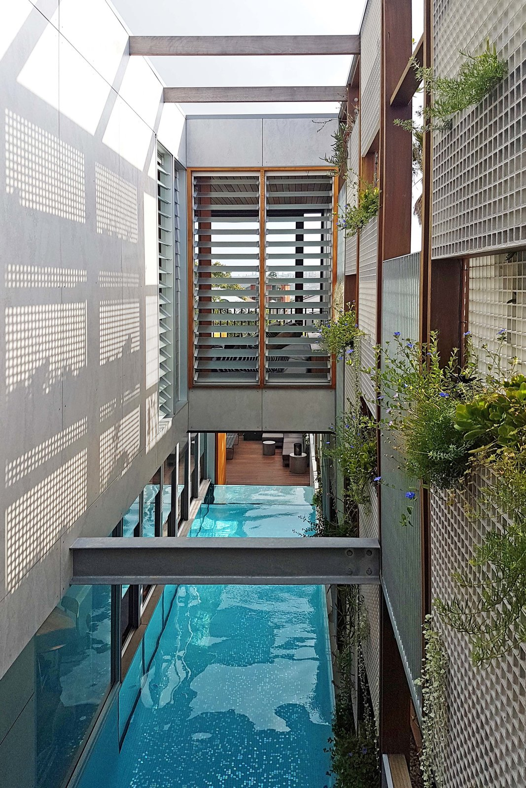 Outdoor And Swimming Pools, Tubs, Shower Photo 14 Of 19 In Living Screens  Conceal