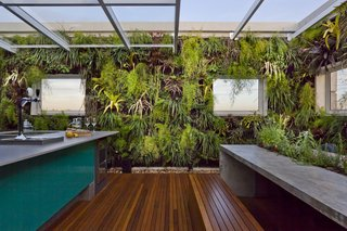 Living Green Walls Bring Jungle Vibes Into a Brazilian Apartment - Photo 2 of 16 -