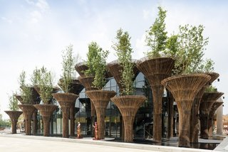 "The Vietnam Pavilion at the Milan Expo 2015, which comprised of 46 bamboo ""trees."""