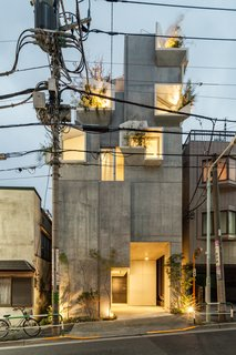 The result is a low-rise residential complex with features that correspond to the trunk, branches, and leaves of trees, which served as Hirata's main source of design inspiration.