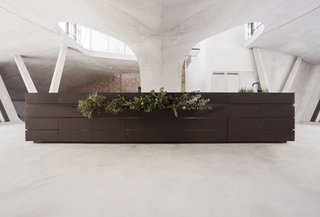 A planter along one side of the lava stone counter.