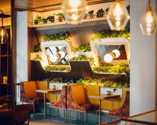 Highly customized planter shelving and two-seater booths ground this wall in the cafe.