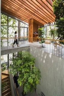"""The 5,081-square-foot dwelling features a large void at the center that cuts diagonally through all three floors. """"We intentionally designed the house as a continuous stepping park from the first to third floor in order to bring the greenery into the living spaces,"""" says Vo."""